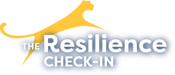 the resilience check in